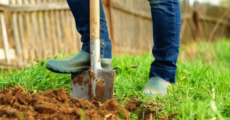 Лопаты: виды и тонкости использования